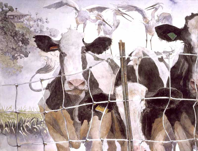 Watercolor Painting by Eddie Flotte: Cows & Egrets
