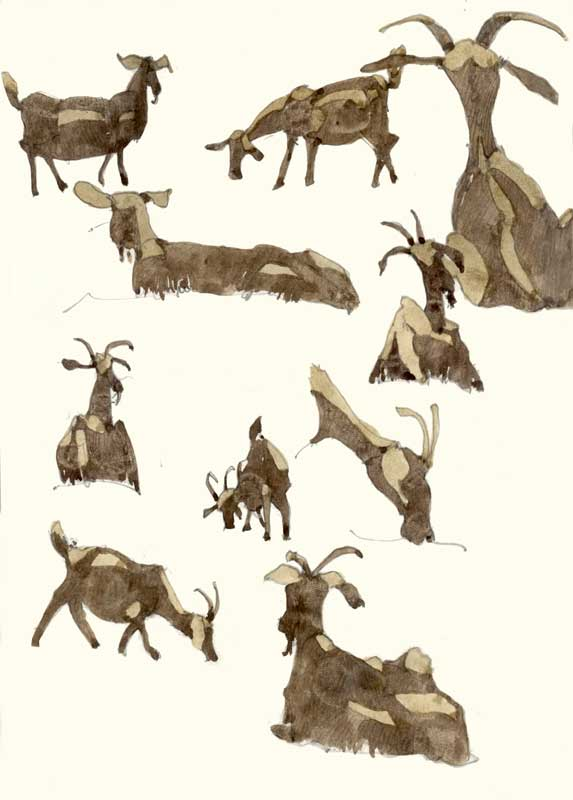 Sketches of Goats by Eddie Flotte