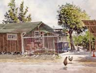 Painting by Eddie Flotte: Chickens at Kitada's