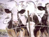 Painting by Eddie Flotte: Cows and Egrets