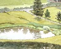 Painting by Eddie Flotte: Looking Down on Kuerner's Farm Pond