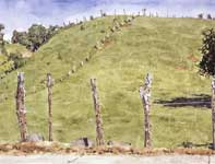 Painting by Eddie Flotte: Maliko Hill
