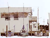 Painting by Eddie Flotte: Three Florida Sailboats